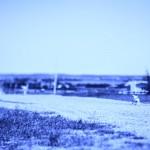 blue_16